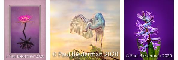 Biederman art